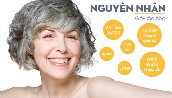Chống oxy hóa làn da